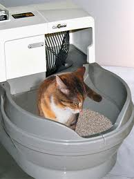 CatGenieLitter Box